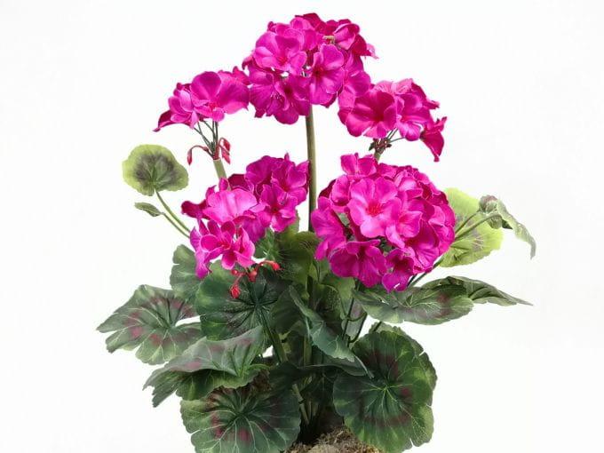Pelargonia Amarant Bukiet Bez Doniczki 22954 Sztuczne Kwiaty Na Balkon Na Taras